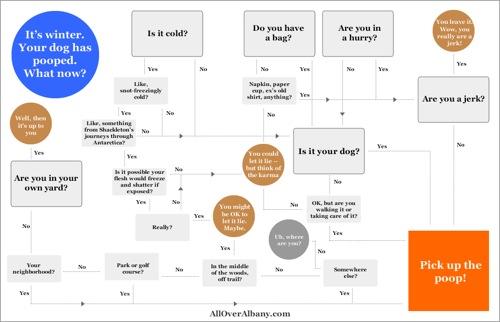 pick_up_dog_poop_flow_chart.png